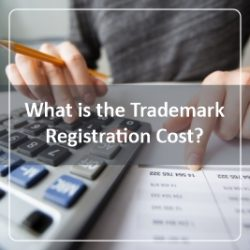 What is the Trademark Registration Cost